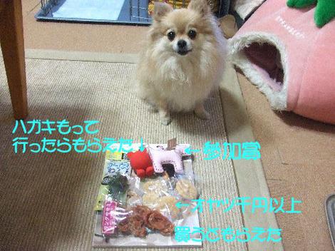 Dscf418811_1